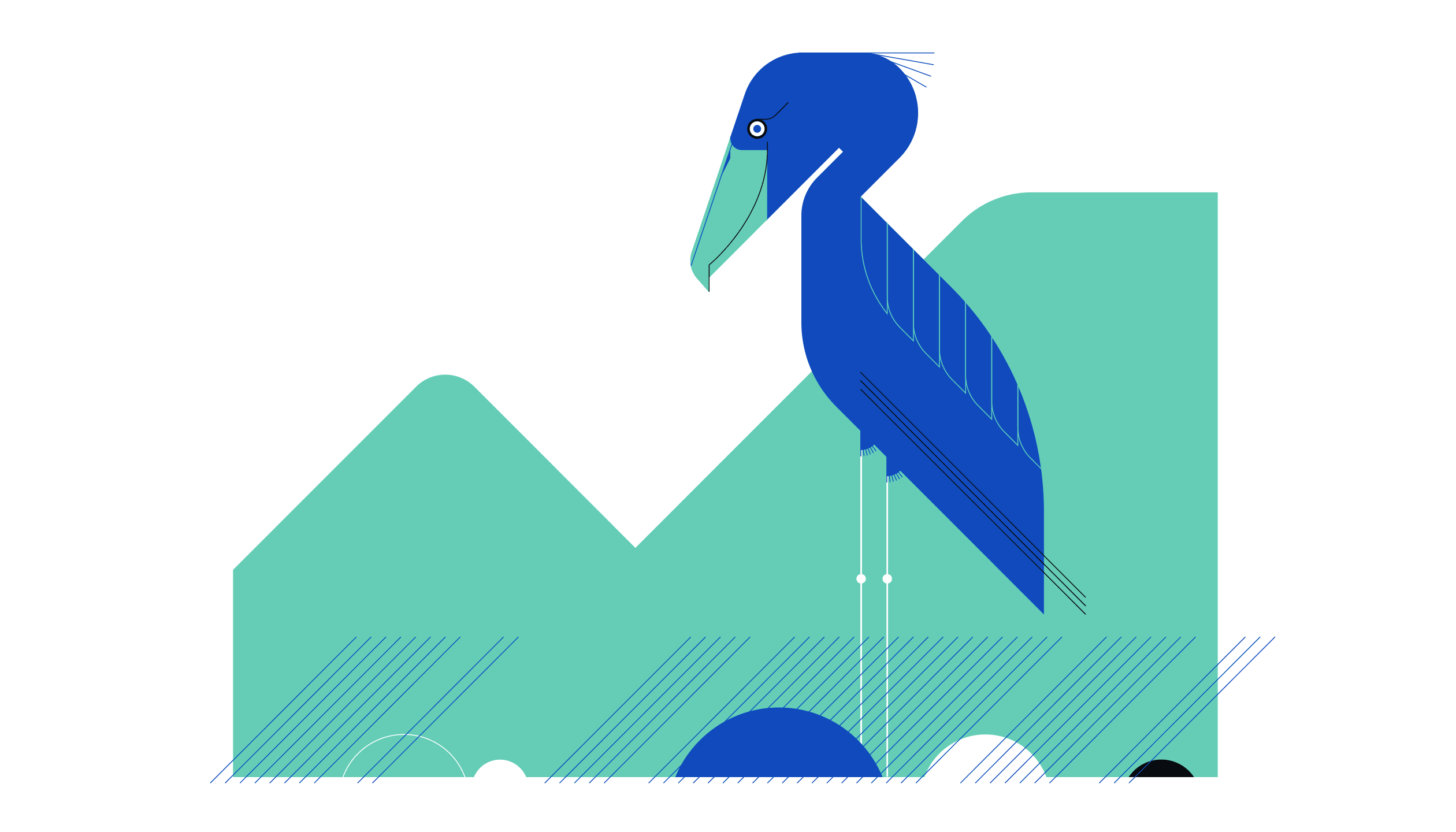 Shoe Bill Stork Illustration